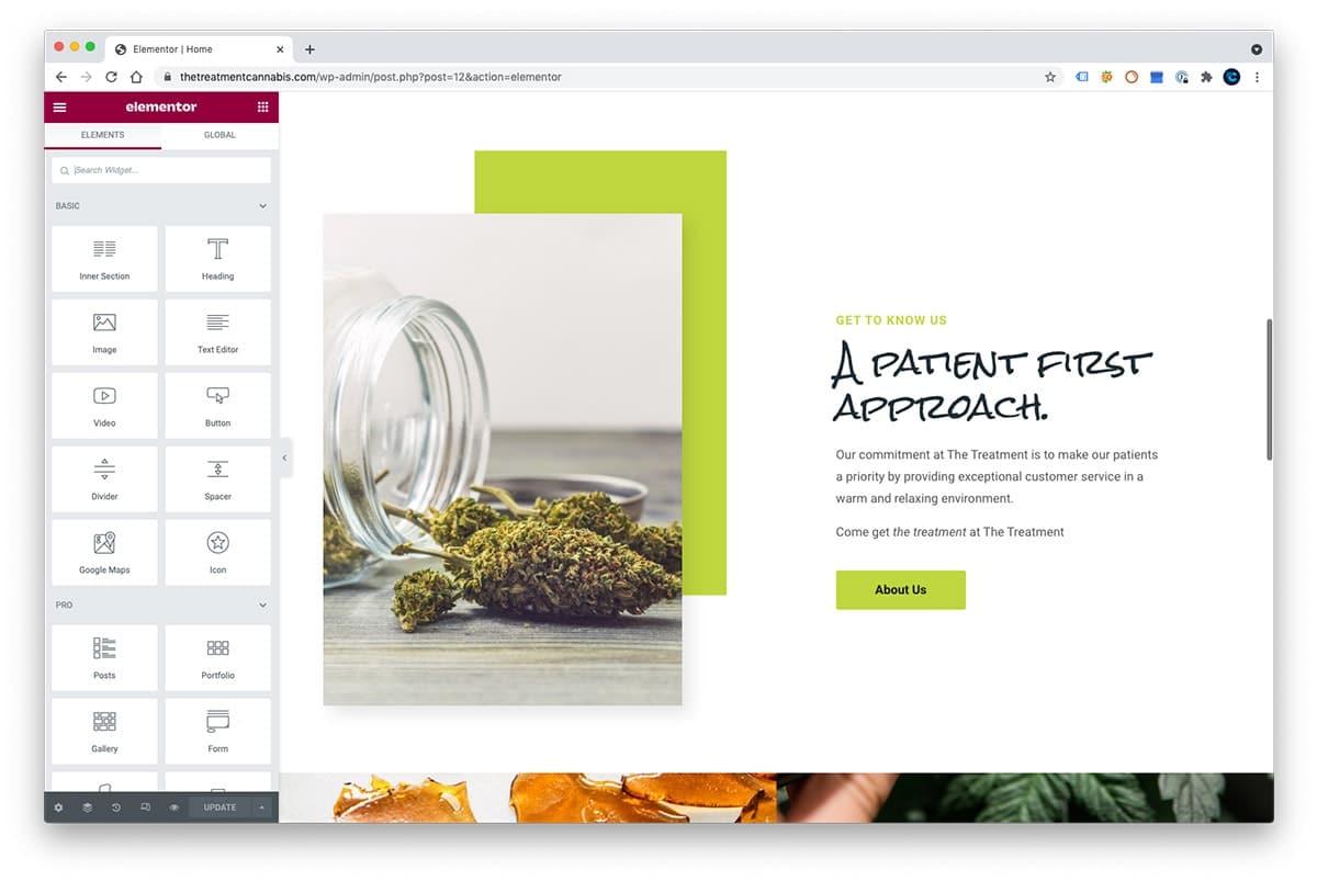 elementor for wordpress dispensary interface